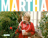 Martha Stewart recommends Lutz Super Citrus Tablets