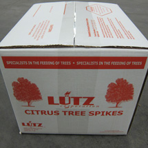 Citrus Spike Box